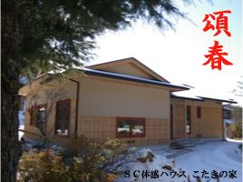IMGP4218.jpg
